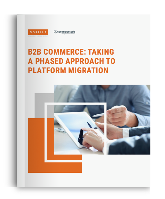 White Paper: B2B Commerce